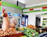 cocomart03 - Retail Bali